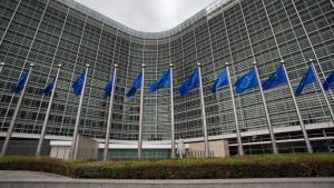 EU-Kommissar Rehn: Niemand kritisiert deutsche Exporte
