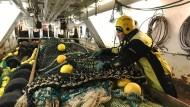 Dag Marten Tverborgvik, Fischerei-Inspektor der norwegischen Küstenwache, kontrolliert die Netze an Bord des Fischtrawlers MS Tønsne.