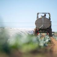 Die Bauern stehen vor großen Herausforderungen.