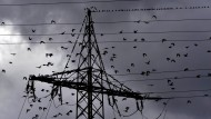 Strompreis für Haushalte seit 2000 verdoppelt