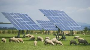 EU: Befreiung von Ökostrom-Umlage großteils rechtens