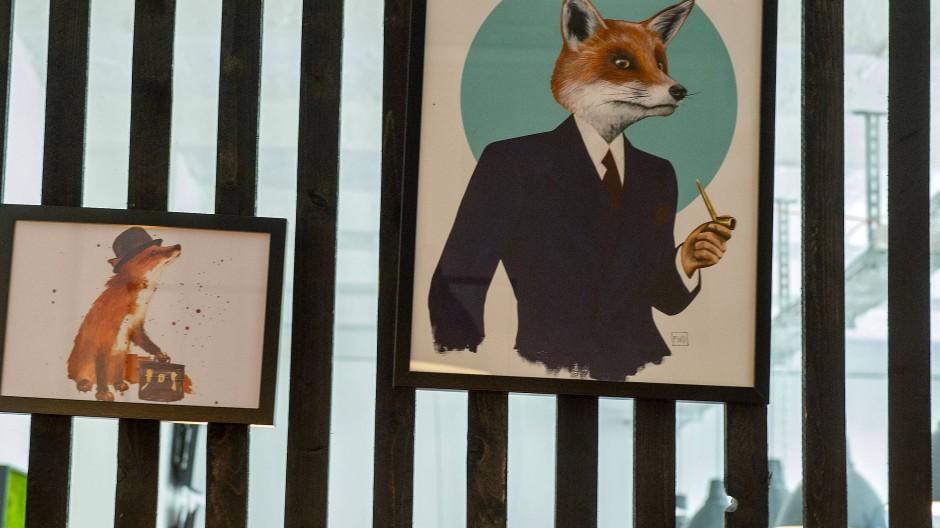 Der Fuchs versichert künftig auch: One verabschiedet sich von seinem Markennamen zugunsten von Wefox Insurance.
