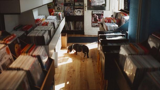 Ein Feiertag für Vinyl-Freunde