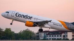 Condor kommt im Überlebenskampf voran