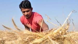 Indien beschließt 20 Milliarden Lebensmittel-Hilfe