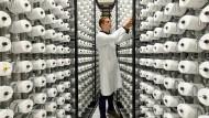 Nicht mehr auf Platz eins: Forschung an neuen Garnen im Volkswagen-Konzern.