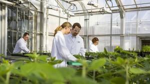 Wir können von Monsanto lernen