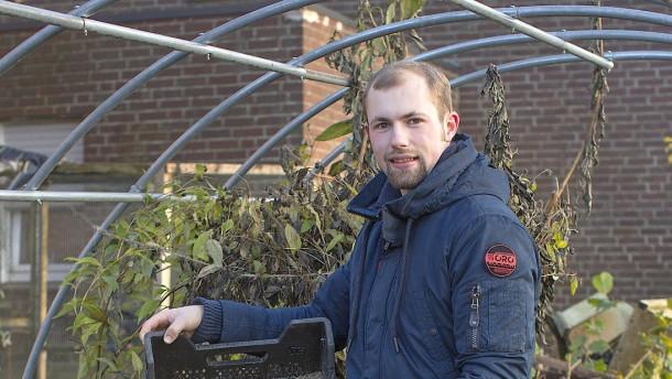 Exzellenz für junge Gärtner