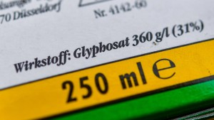 EU-Behörde stuft Glyphosat als nicht krebserregend ein