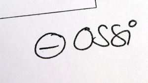 Ossis sind kein eigener Volksstamm