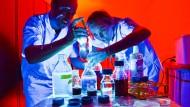 Von der Autoindustrie gefördert: Stammzellenforscher der Medizinischen Hochschule Hannover
