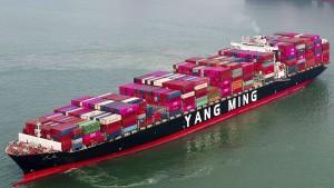 Das Faustrecht im Welthandel