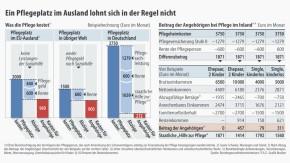 Infografik / Pflegeplatz im Ausland
