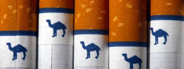 Keine Camels mehr am Arbeitsplatz