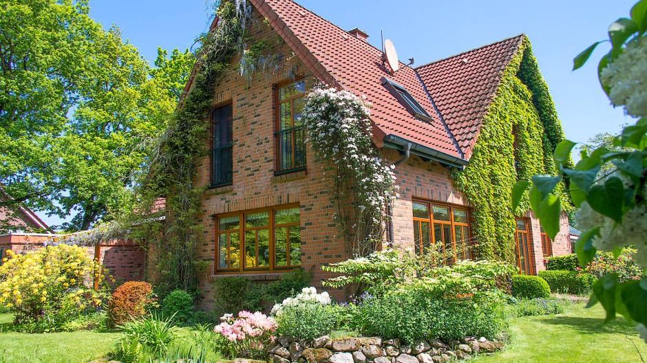 Mehr Natur: Für viele Menschen kann das Heim nicht grün genug sein.