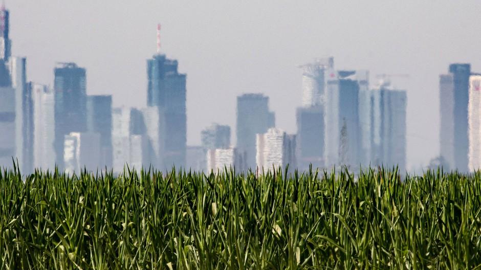 Geld für Grünes: Klimaschutz ist teuer. In Deutschland soll deswegen nun eine private Allianz die öffentlichen Maßnahmen unterstützen.