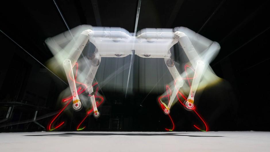 Roboter Solo 8: Er wurde am Max-Planck-Institut für Intelligente System in Tübingen und Stuttgart mit Robotikern der New York Universität gebaut.