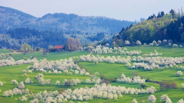Schnelles Internet in jedem Schwarzwaldtal
