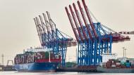 Chinas Staatsreederei kauft sich im Hamburger Hafen ein