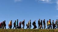 Immer mehr Flüchtlinge kommen. Wer soll die ganze Verwaltungsarbeit machen?