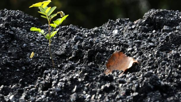 Klimaretter kaufen Kohleminen