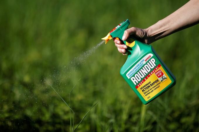 Glyphosat steht im Verdacht, krebserregend zu sein.