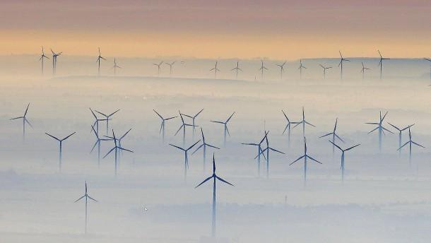 """""""Das bringt den Kohleausstieg auf leisen Pfoten"""""""