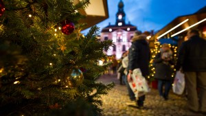 Weihnachtsbaum-Preise bleiben voraussichtlich stabil