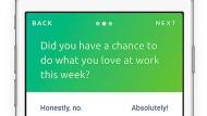 Hat Sie Ihre Arbeit diese Woche erfüllt? Absolut!