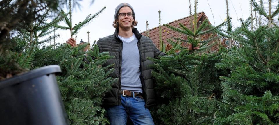 Weihnachtsbaume mieten bremen