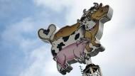 Fleischproduzent Tönnies konzentriert sich wieder auf seine Kernkompetenz: Ochse, Kuh und Schwein im Tönnies-Logo