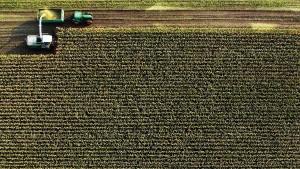Stickstoff-Ernte aus der Luft