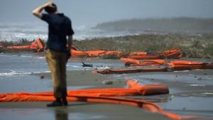 Kein Fischfang an Amerikas Südküste mehr