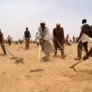 """Das Programm """"Cash for Work"""" gibt es seit Jahren -  unser Bild zeigt Männer im afrikanischen Staat Niger."""