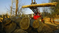 Rumäniens Polizei befreit Arbeitssklaven