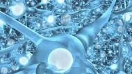 Aufstieg der Computer-Gehirne