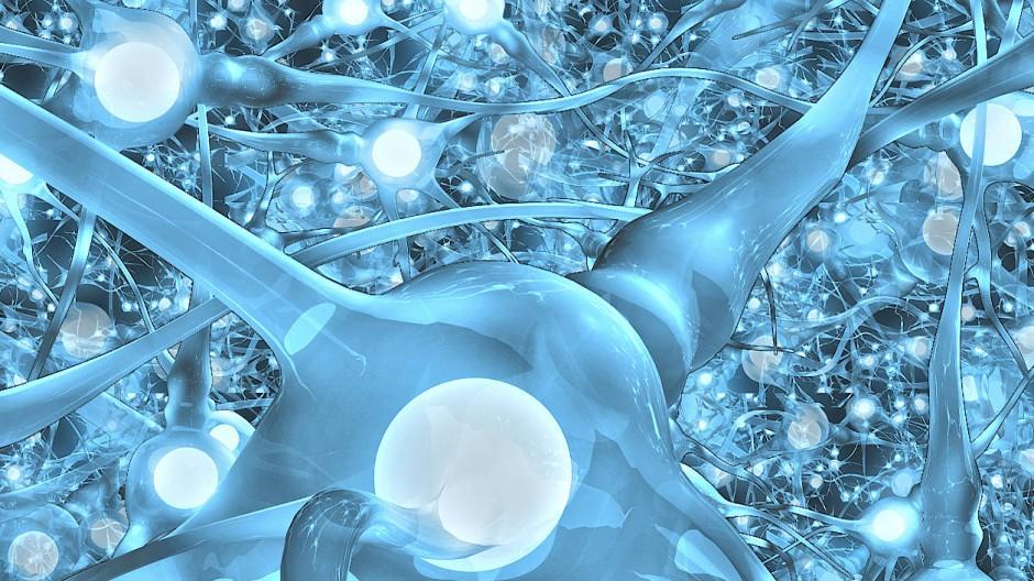 Künstliche Neuronale Netze sind eine große Hoffnung - Computer sollen so lernen wie das menschliche Gehirn.