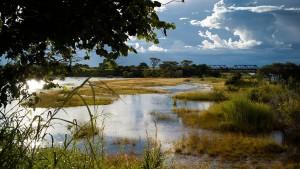 Ein unentdeckter Brotkorb für Afrika
