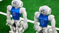 Der Robo-Cup ist bekannt. Aber bei anderen Wettbewerben lässt sich mehr Geld mit nach Hause nehmen.
