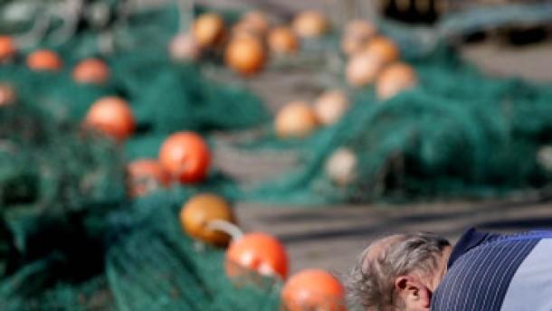 Kameras gegen die Überfischung der Meere