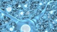 Wie sehr konkurrieren Computer einmal mit unserem Gehirn?