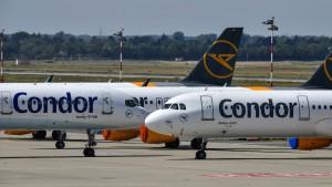 Condor nimmt zweiten Anlauf