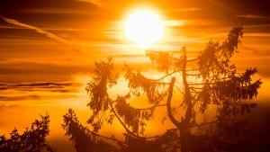 Sonne, böse Sonne