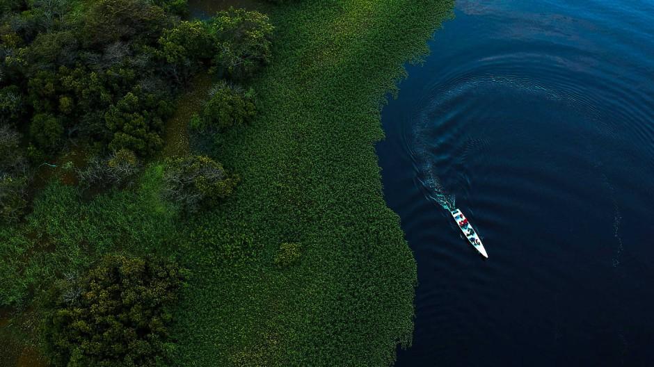 Einen Drohnenaufnahme des Mamirauá-Reservats für nachhaltige Entwicklung im brasilianischen Bundesstaat Amazonas.