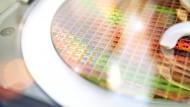 Wafer im Dresdner Chipwerk von Infineon. Auf der Siliziumscheiben sind in Tausenden komplizierten Arbeitsschritten winzige Schaltkreise aufgebracht.