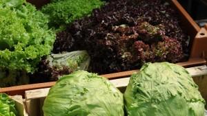 Die Verbraucher kaufen weniger Salat