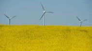 Weniger Förderung für Windräder an Land