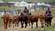 Die Landreform droht zu scheitern