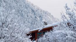 Wenn der Schnee Urlaub und Arbeit verhindert