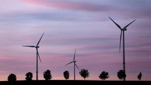 Ökostrom-Umlage kostet Betriebe 500 Millionen Euro